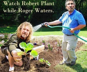 funny, pun, and planting flowers image