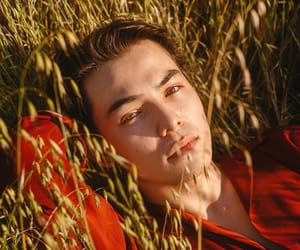 boy, cute, and ryanpotter image