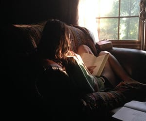 book, reader, and sunshine image