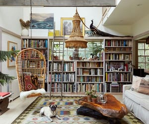 books, library, and beutifull image