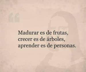 frases and pensamiento image