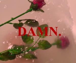 damn, rose, and kendrick lamar image