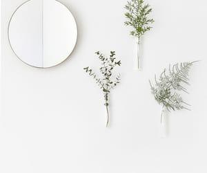 mirror, plants, and minimal image