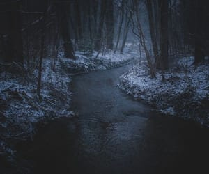 forest, river, and winter image