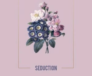 background, pink, and seduction image