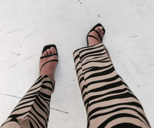 animal print, chic, and fashion image
