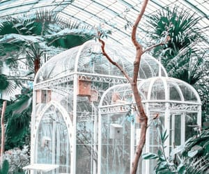 greenhouse and garden image