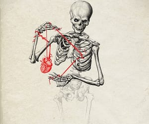 heart, art, and skeleton image