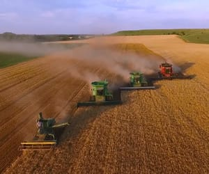 grains, combines, and wheat image