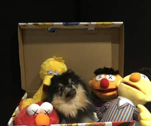 dog, jin, and yeontan image