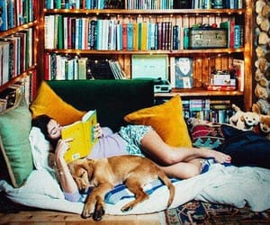 book, dog, and reading image