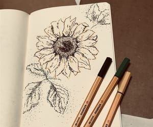 drawing, flower, and sunflower image
