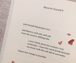 book, petals, and quote image