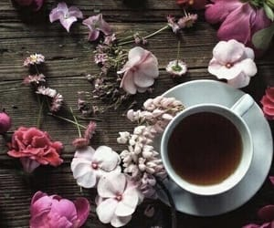 buds, tea cup, and herbal image