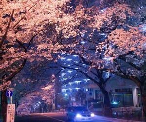 japan and light image