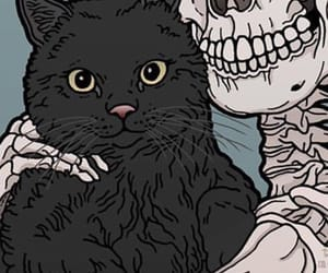 background, cat, and kitty image