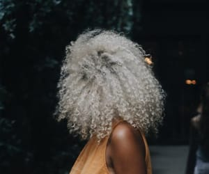 beauty, blond, and curl image