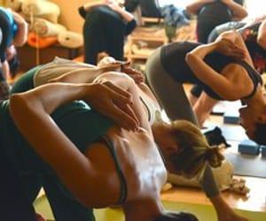 grasshopper, yoga poses, and yoga for women image