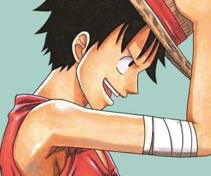 one piece, straw hats, and monkey d. luffy image
