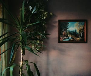 climate, home, and decor image