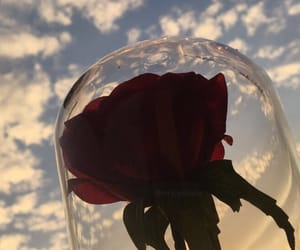 aesthetic, beauty and the beast, and clouds image
