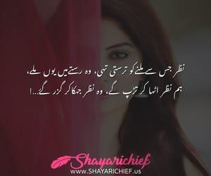 urdu poetry, urdu shayari, and famous poetry image
