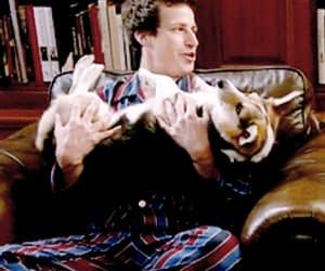 andy samberg, jake peralta, and dog image