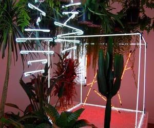 neon and plants image