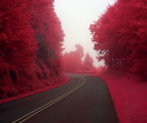 red, nature, and road image