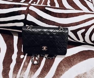 chanel, handbag, and purse image