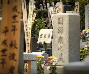 cemetery, japanese, and graveyard image