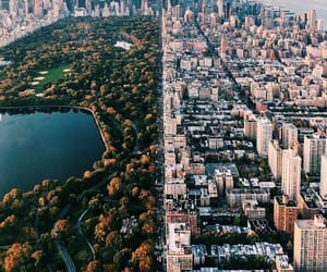 Central Park, city, and new york city image