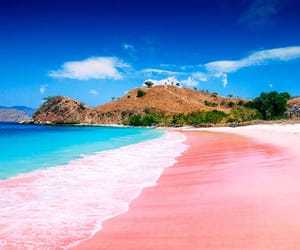beaches, paradise, and beach lovers image