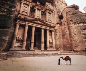 camel, photography, and jordan image