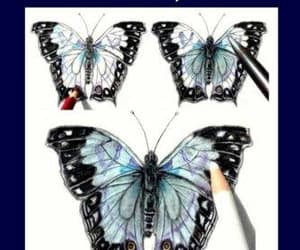 book, butterflies, and coloring pencil image