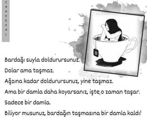 kitap, alıntı, and söz image
