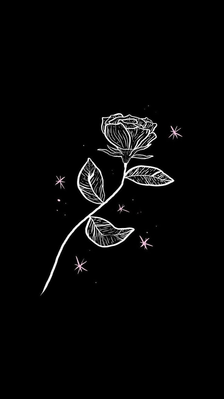 Black Rose Discovered By Matild On We Heart It
