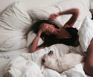animal, bed, and girl image