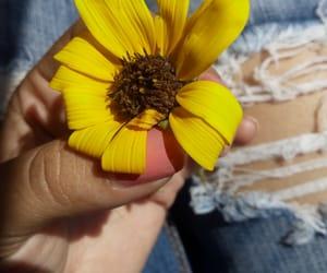 dark, flower, and yellow image