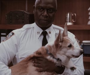 icons, captain raymond holt, and edits image