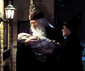 harry potter, dumbledore, and minerva mcgonagall image