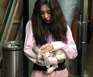 bunny, RV, and seulgi image