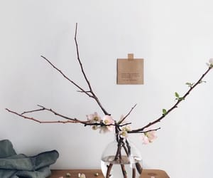 aesthetics, branches, and florals image