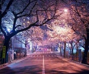 street, japan, and night image