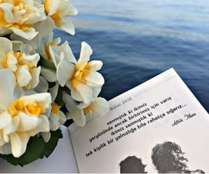attila ilhan, türkçe sözler, and alıntı image