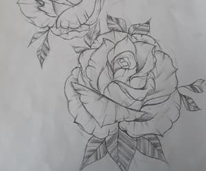 art, flowers, and pencil image