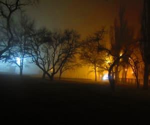beautiful, foggy, and lights image