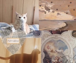 cat, wallpapers, and paint image