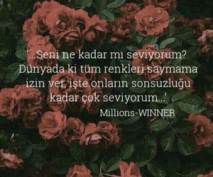 millions and winner image