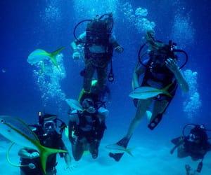 diving, explore, and scuba image